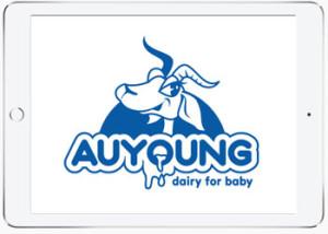 Graphical Logo Design, Sutherland Shire, Sydney
